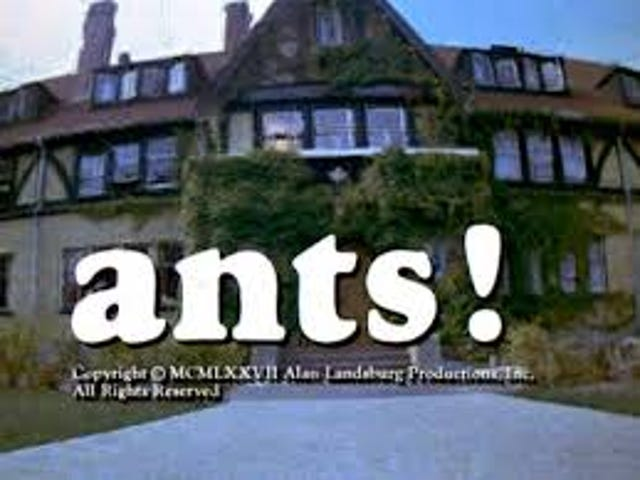 Svengoolie: चींटियों!  (1977)