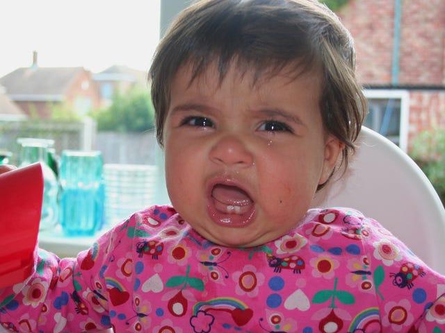 Jak odróżnić napad złości od krachu zmysłów