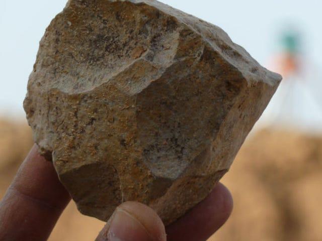 Un nuevo descubrimiento reescribe por Completeo lo que sabemos sobre el origen de la humanidad