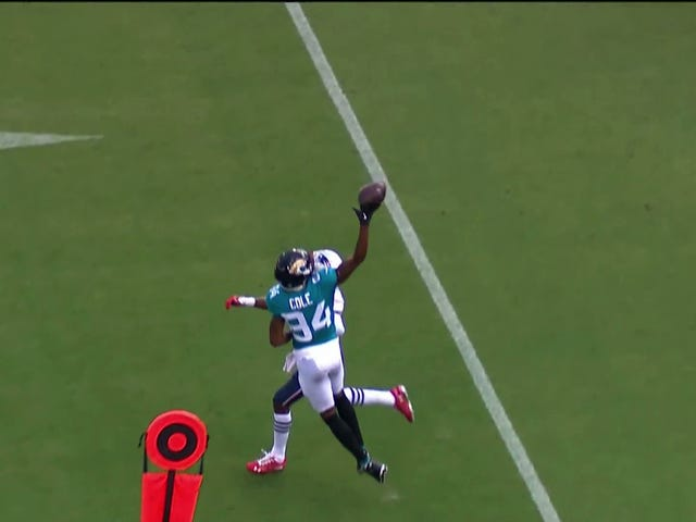 Jaguars WR Keelan Cole Snags An Absurd One-Handed Catch Against The Patriots