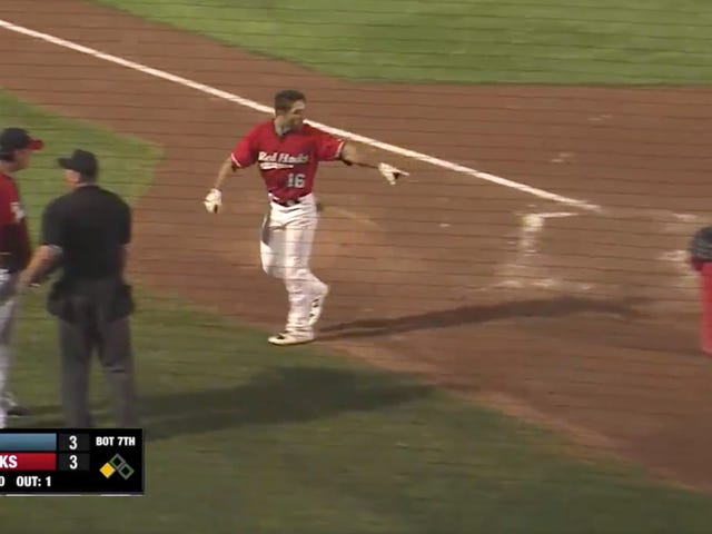 "Angry Baseball Guy Brings Trash Can Onto Field, Tells Umpire To ""Go To Your Home"""