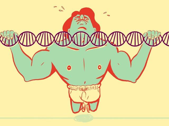 Hur mycket påverkar genetik verkligen din fitness?