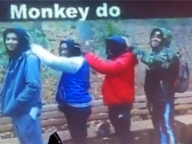 New York Teacher Compares Black Students to Monkeys in Photo