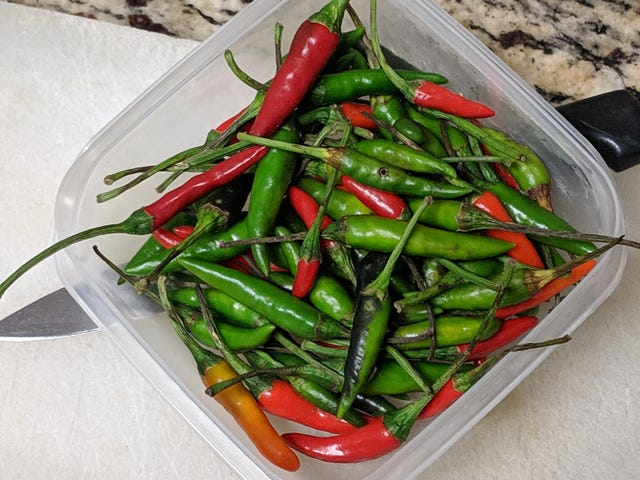 These Thai Peppers don't Play