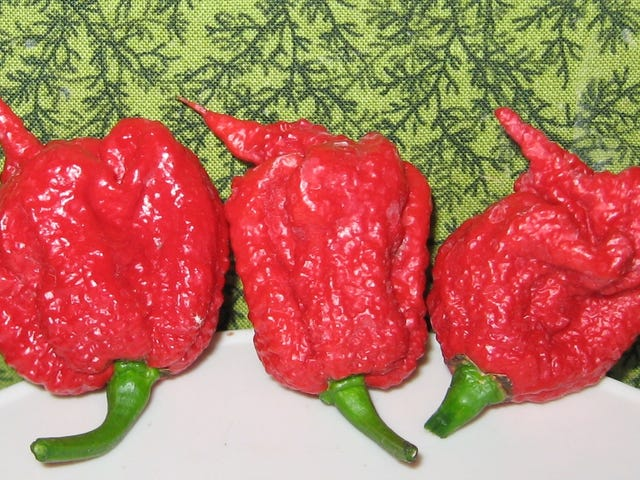 World's Hottest Pepper Sends Man to the ER With Thunderclap Headaches