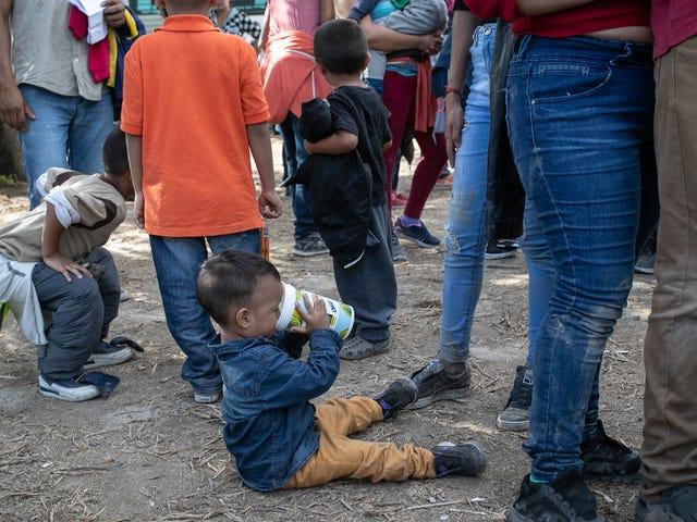 Les États-Unis prévoient de tester l'ADN des immigrants dans les centres de détention