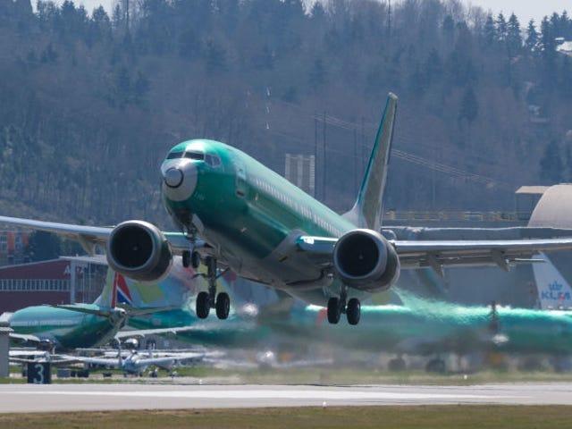 To andre flyselskaber annullerer flere fly af deres Boeing 737 Max, efter at en ny softwarefejl er opdaget