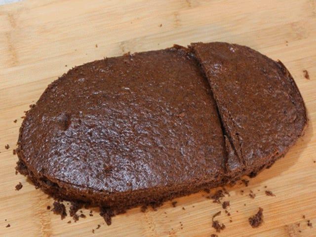 ¿Quién tiene hambre de un pastel de cucarachas?