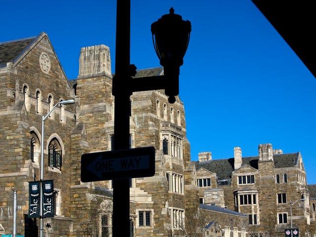 Black Yale çalışanı tutuklandı, pamuk taşıyan köleleri betimleyen vitray paneli parçaladıktan sonra işini kaybetti