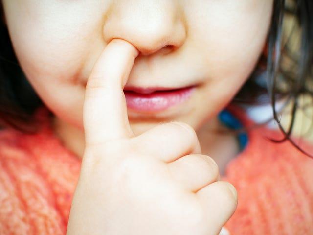 Você deve deixar seus filhos comem seus Boogers?
