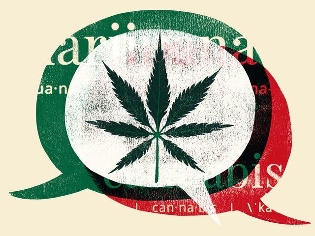 The Racist Strain of 'Marijuana'