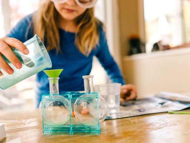 Finden Sie Hunderte von Ideen für wissenschaftliche Experimente in 'Scientific American'