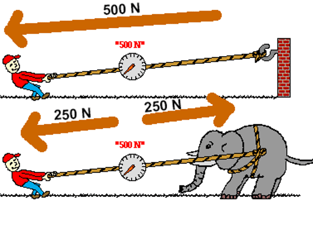 Are the vectors correct in this image?