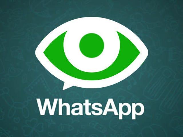 La Agencia Española de Protección de Datos investiga los cambios de privacidad de WhatsApp