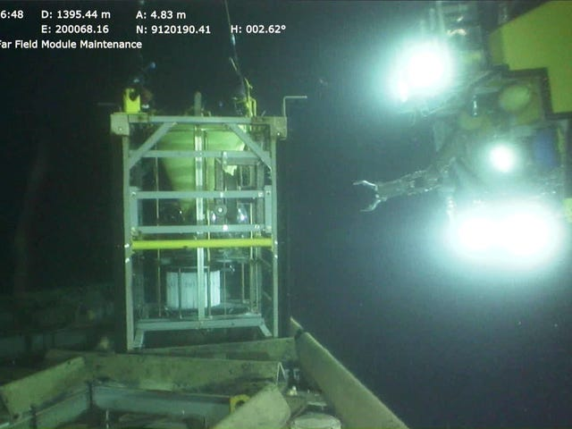 Scientists Find Evidence of Deep-Sea Fish Migration Route
