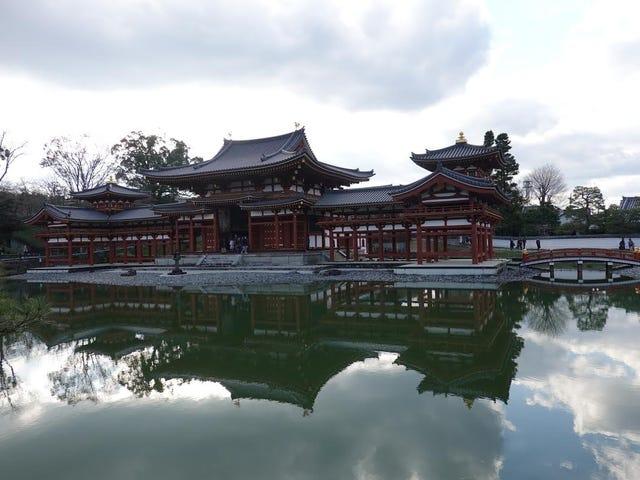 Byodoin. Uji, Kyoto Prefecture. By Scott Bartley