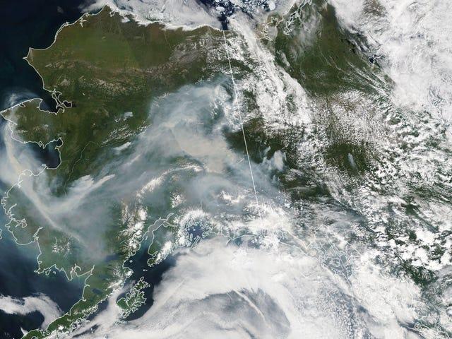 Musim Berlian Aliansi Alaska Meledak, Menyebarkan Asap Sepanjang Negeri