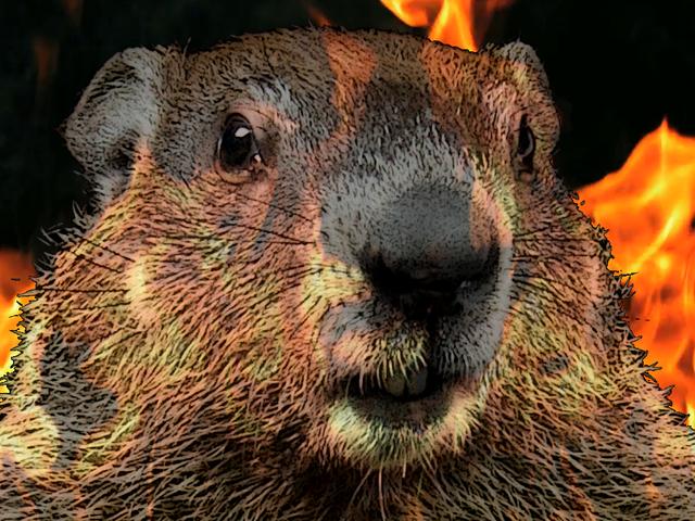 RedStripe Yêu Trax: Groundhog, <i>DJ Hero</i> kiểu