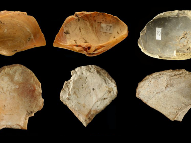 Free-Diving Neanderthals Gathered Tools From the Seafloor