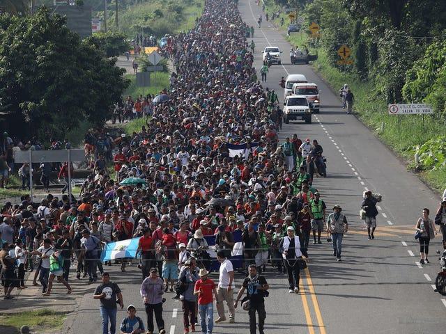 Trump rapporteres at sende militæret til at stoppe desperate mennesker fra at søge asyl
