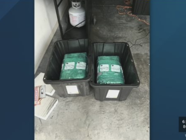 Fla. Couple ordena contenedores de Amazon, también obtiene 65 libras de Weed