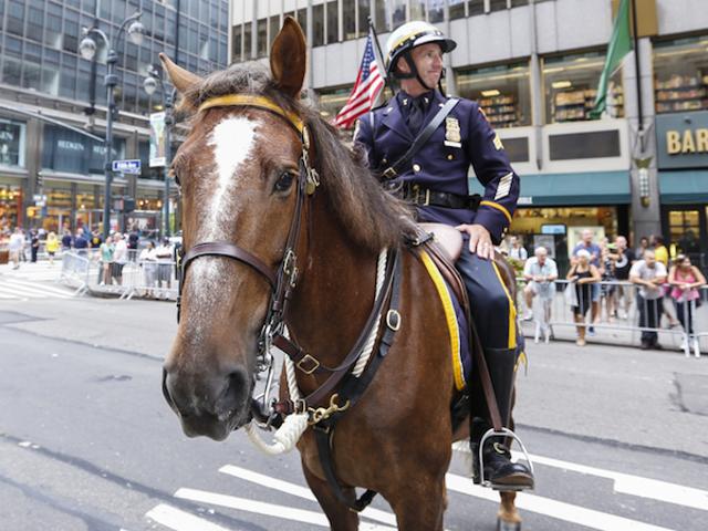 ट्रम्प रैली में चेहरे पर पुलिस के घोड़े को थप्पड़ मारने का आरोप