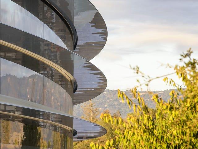 El nuevo campus de Apple tiene tanto vidrio que sus ingenieros no paran de chocarse con las paredes