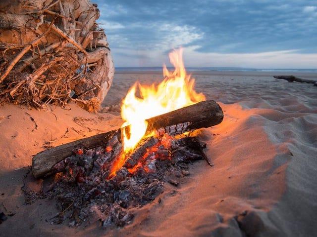 Gamle campfires kan ha sluppet menneskehetens topp bakterielle morder