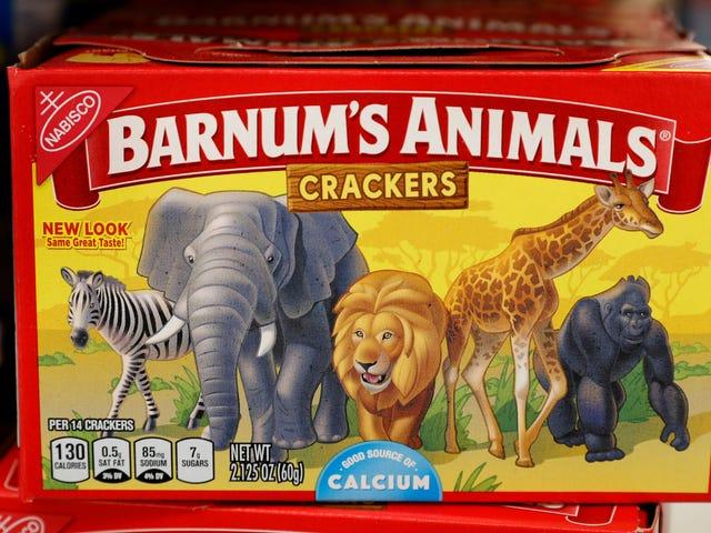 Animal Crackers kommer ud af deres bur og de har gjort lige fint