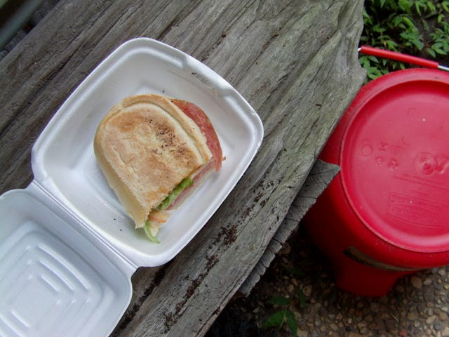 Sandwich Hari Ini: The Marie