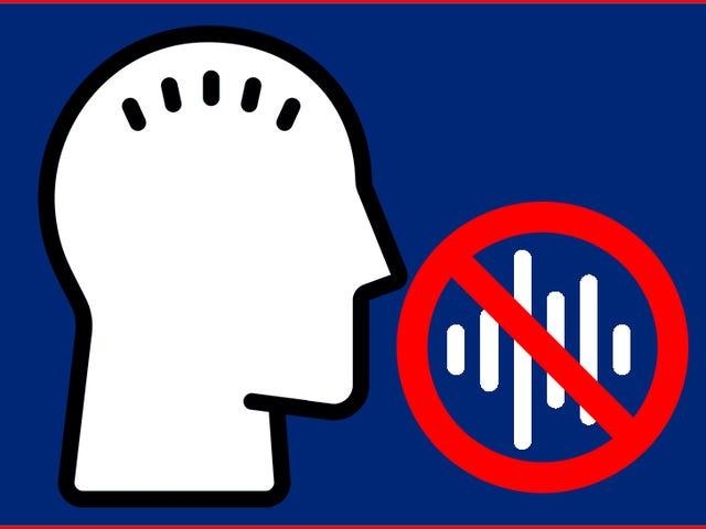 Le logiciel de reconnaissance vocale flunks du test de compétence en anglais du demandeur de visa irlandais
