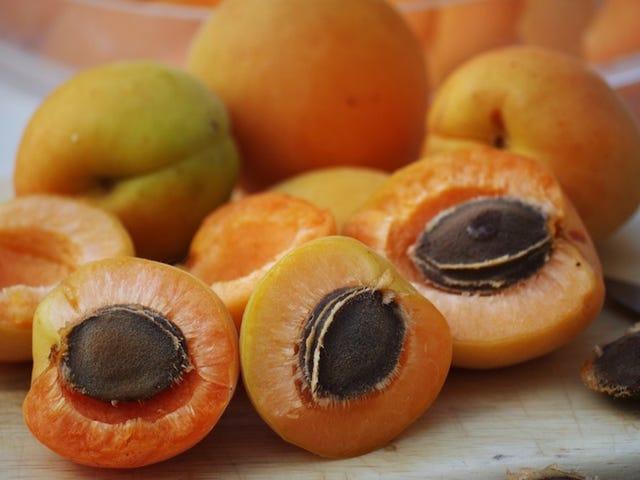 St Ives Apricot Scrub Faces Lawsuit per aver causato irritazione facciale