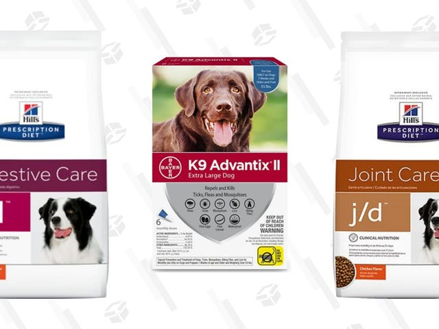You Already Need Dog Food, Get $15 Off Your Next Chewy Order That Includes Rx Med or Rx Food