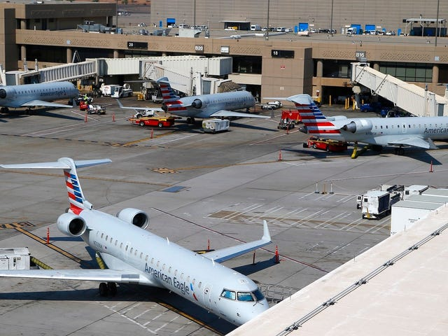 Unattended Car Shuts Down Parts of Phoenix Airport for Hours, Delays Hundreds of Flights