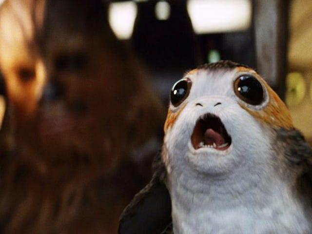 <i>The Last Jedi's</i> Porgs <i>The Last Jedi's</i> ne sont que des macareux, dont l'équipe du film ne pouvait se débarrasser