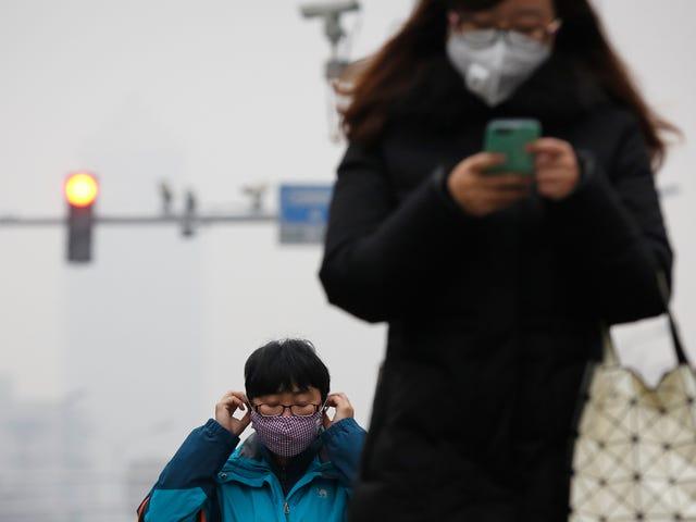 En ny AI estimerer forurening fra crowdsourced billeder