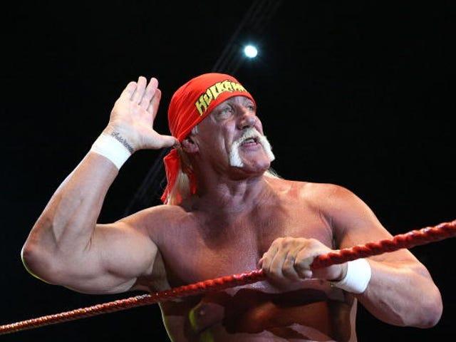 """Verden chokeret den mand, der hedder """"Hulk"""", som gjorde levende, blev slået på hovedet, sagde noget offensivt"""