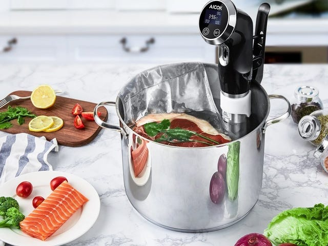 Jump On the Sous-Vide Bandwagon For Just $58