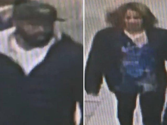 Brooklyn Duo Robs Dollar Store and Beats Employee