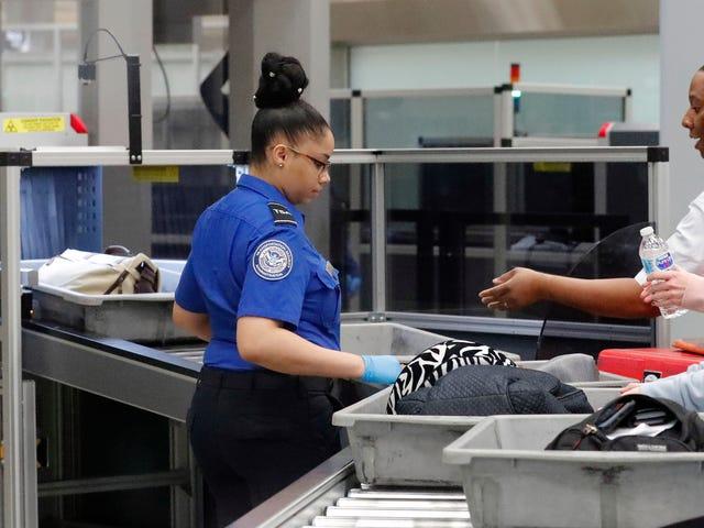Traveler Got a Gun Through TSA Flying From Atlanta to Tokyo