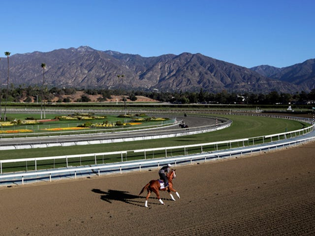 30th Horse Dies At Santa Anita; Hall Of Fame Trainer Banned From Track