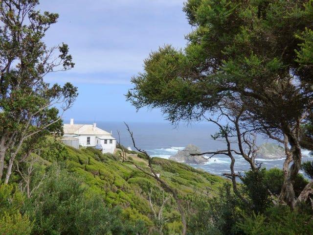 ¿Buscas empleo? Tasmania busca dos personas para que cuiden una isla deshabitada