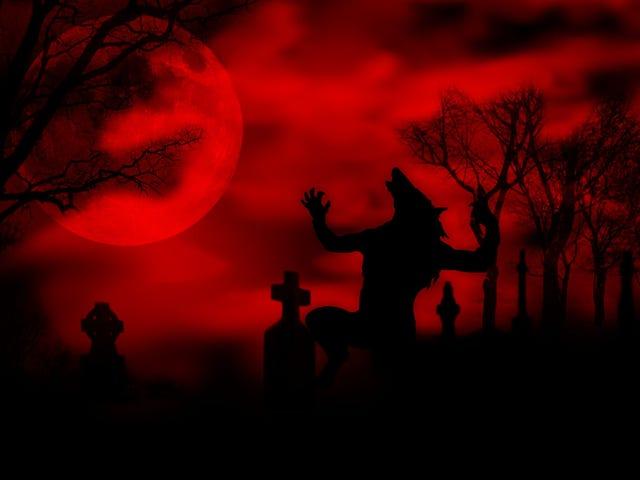 """Bizarre """"Werewolf"""" Vs. """"Vampire"""" Murder Trial Is Currently Underway"""