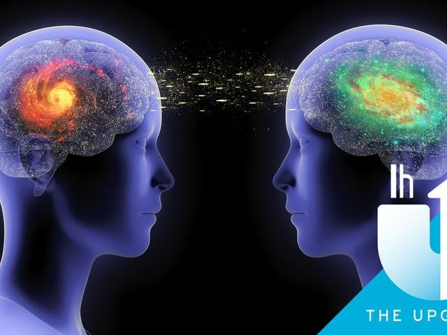 Πώς να διαβάσετε τα μυαλά, με τον νοσηλευτή Henrik Fexeus