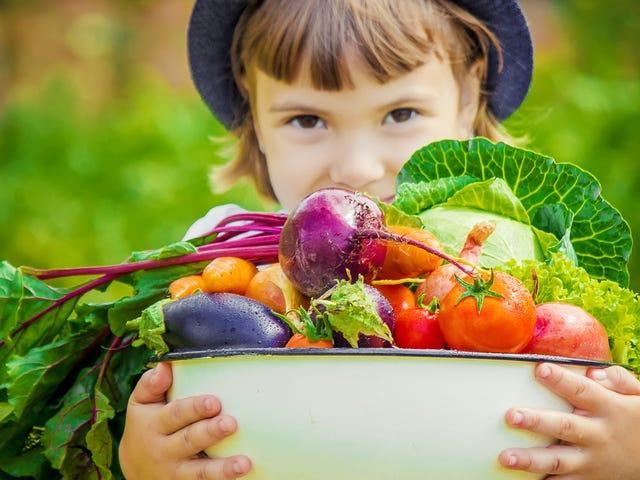Ahora es el momento de plantar un jardín con tus hijos