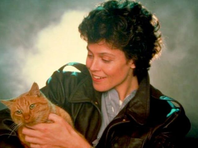 """<a href=""""https://news.avclub.com/these-images-of-sigourney-weaver-and-the-alien-cat-will-1798255327"""" data-id="""""""" onClick=""""window.ga('send', 'event', 'Permalink page click', 'Permalink page click - post header', 'standard');"""">These images of Sigourney Weaver and the <i>Alien</i> cat will make your heart burst out of your chest</a>"""