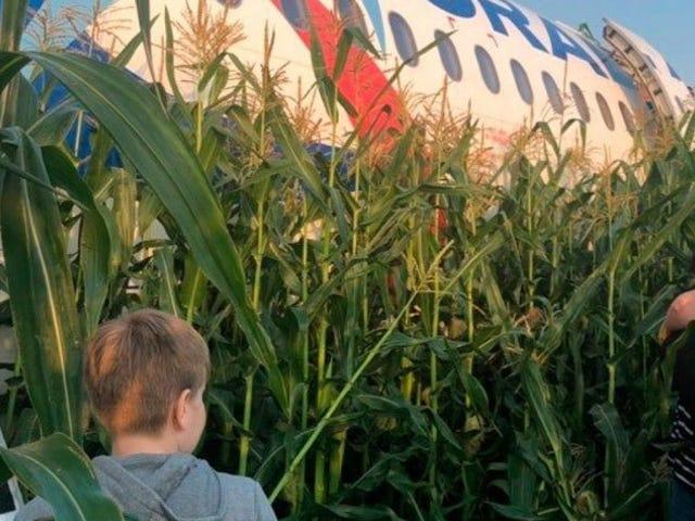 En passager registrerer den mirakuløse nødlanding af et fly med 233 passagerer i et kornmark i Rusland