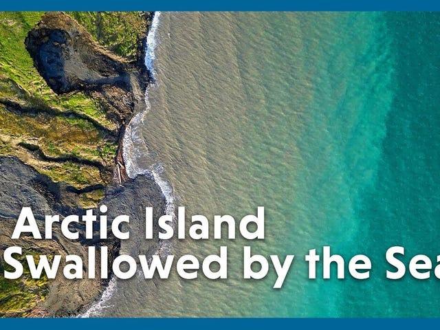 Nuevas imágenes muestran cuán alarmantemente rápido se desmorona una isla ártica en el mar