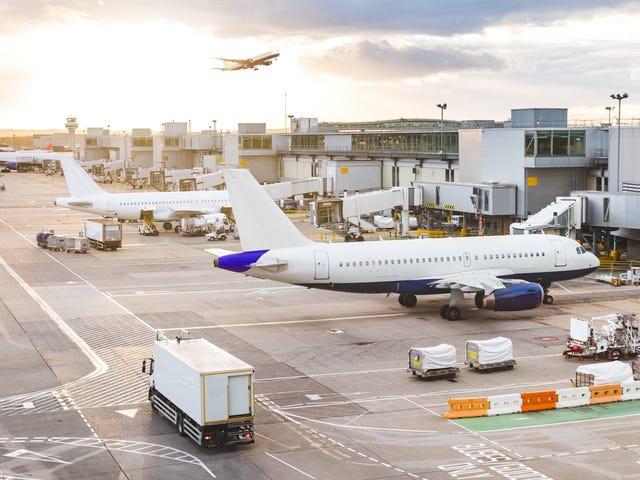 De beste tidene for å bestille fly i 2020