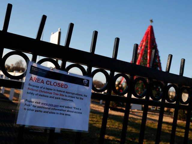 Donald Trump Tells the Grinch to Hold His Beer: National Christmas Tree Unlit Due to Government Shutdown